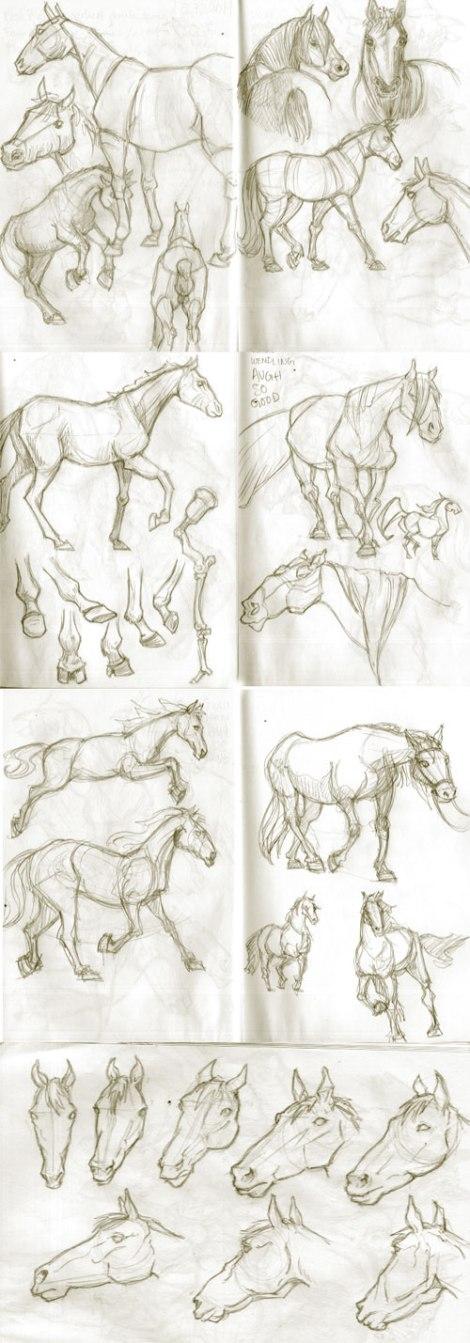 HorsesFinal