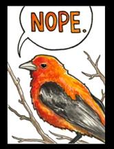 Orange_WEB