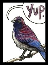 Purple_WEB