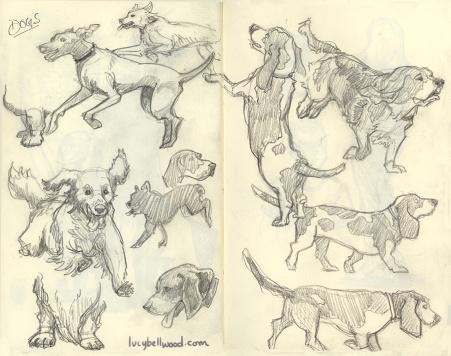 DogsWeb